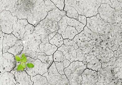 """Der """"Green Deal"""" der Europäischen Kommission"""