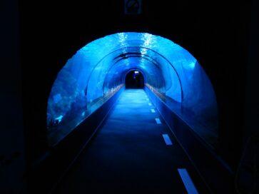 Staatliche Förderung der Klimakatastrophe: Unterwassertunnel in Norddeutschland und Basistunnel in den Alpen @ Onlineveranstaltung